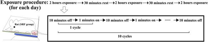 smartphone RF-EMR exposure